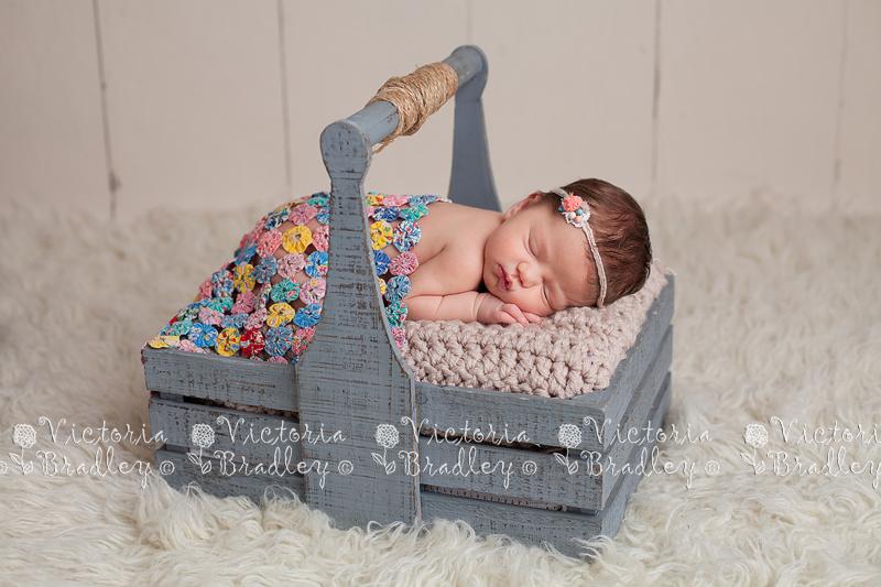 Derby newborn photographer