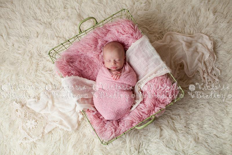 Newborn Photography Derby