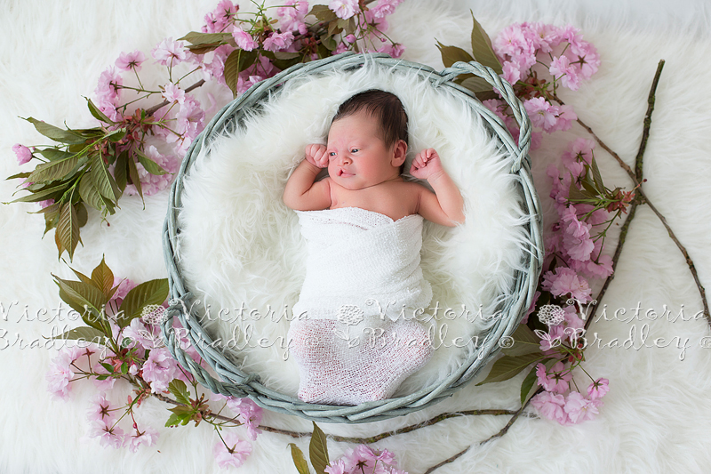 Newborn Photography Nottinghamshire
