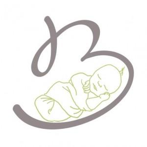 banp_logo
