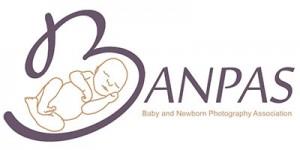 BANPAS logo to link to banpas site