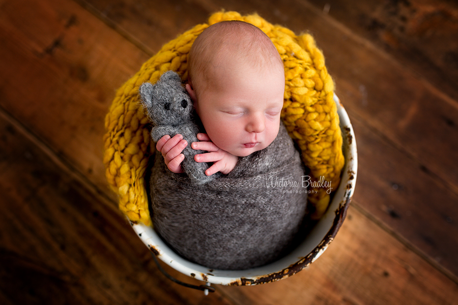 newborn baby boy in a white metal bucket with mustard stuffer, wrapped in a grey wrap holding a little grey knitted teddy bear