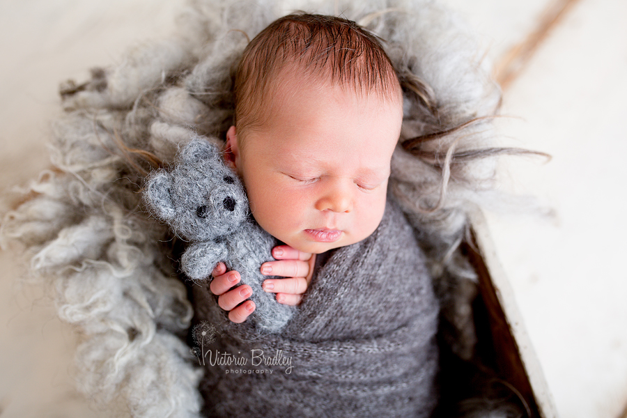 wrapped newborn baby with tiny grey bear