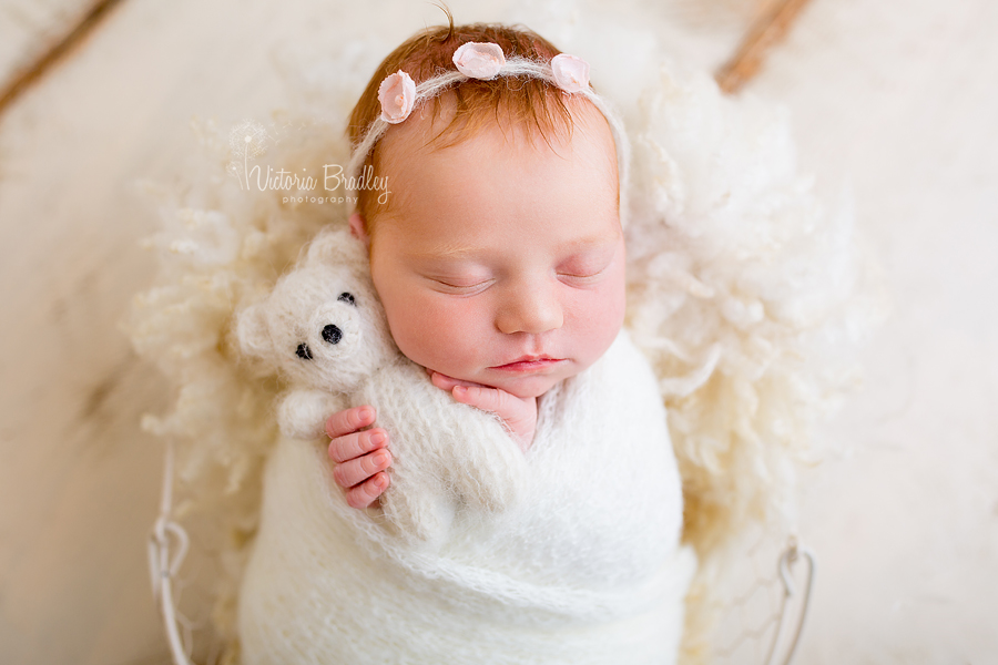 newborn photography wrapped baby girl with white bear, white knitted wrap on a cream basket stuffer