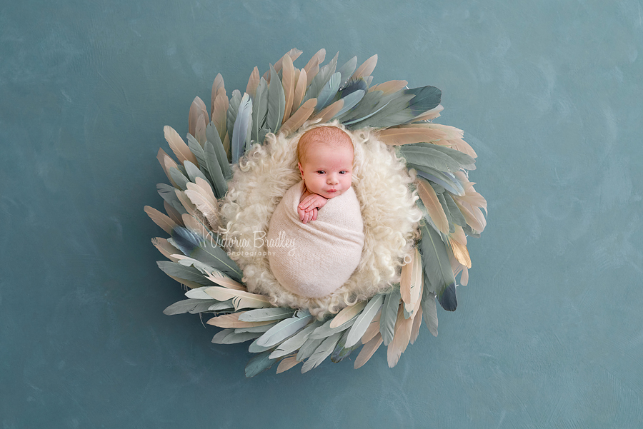 newborn is duck egg feather bowl