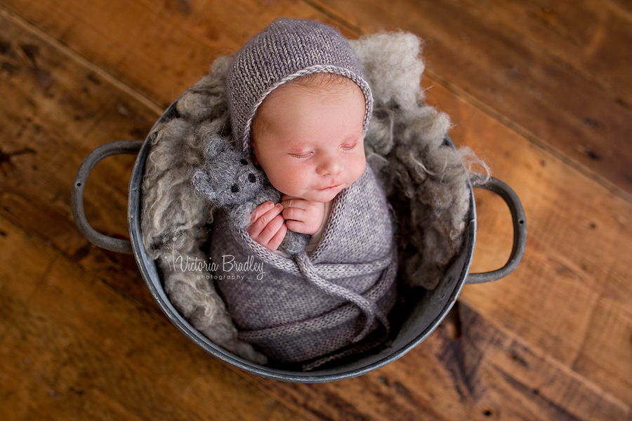 newborn in grey bucket with grey wrap and teddy