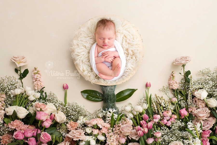 newborn baby girl in floral set-up photography
