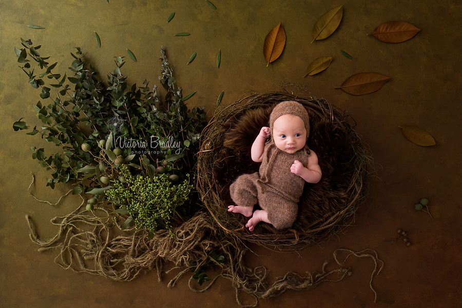 baby in rustic basket with leaves and twigs