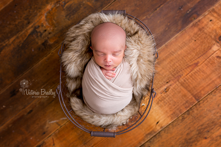 newborn wrapped mini session photography