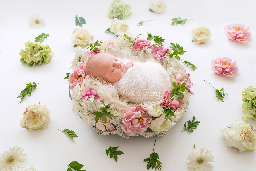 newborn baby girl photography in a flower nest
