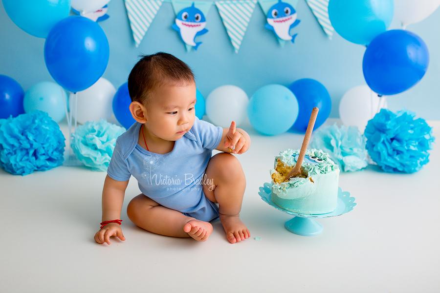first birthday cake smash photography blues, whites baby shark