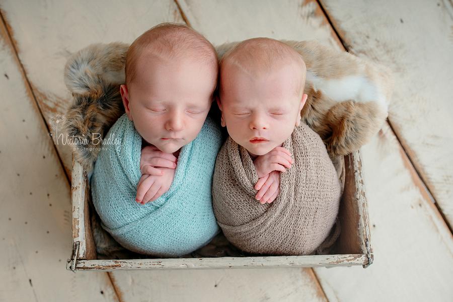 newborn baby twins boys photography
