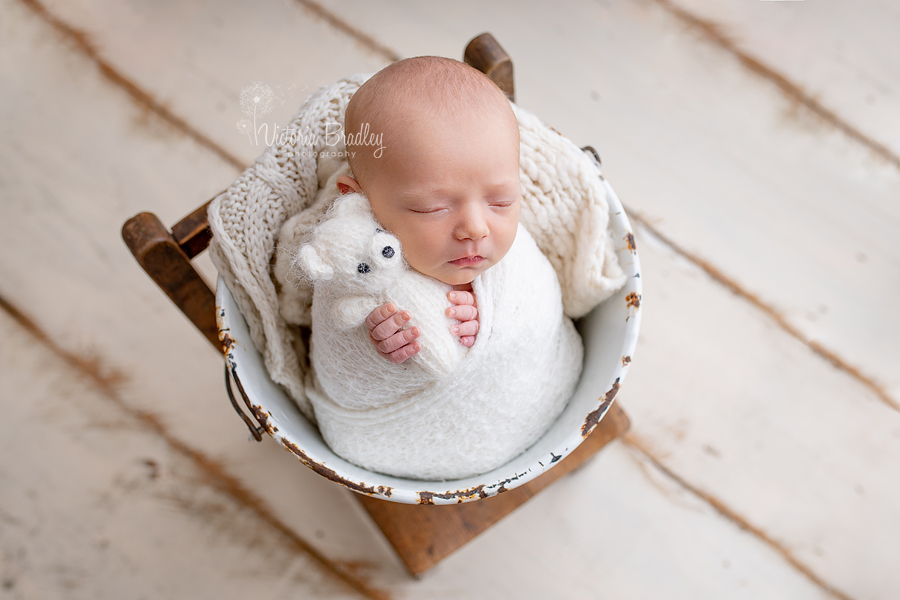 wrapped newborn photography mini session baby in bucket with white teddy