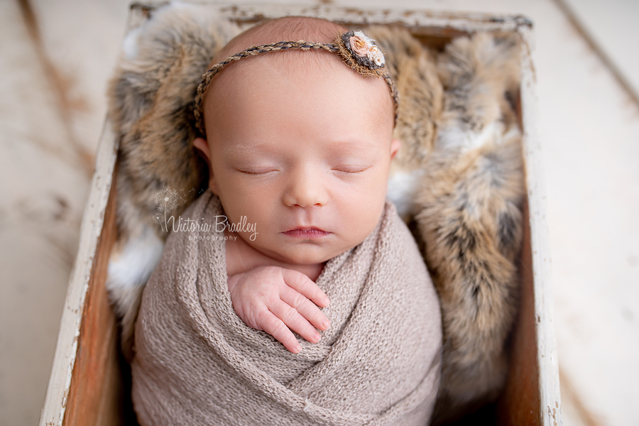 wrapped newborn mini session baby girl in taupe wrap with tie back