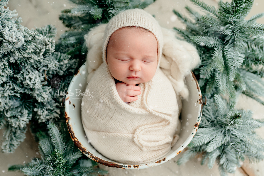 wrapped newborn with christmas trees